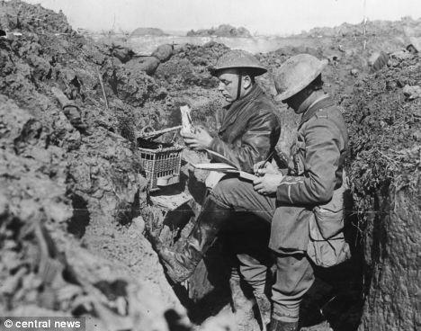 Pombo correio a serviço dos soldados