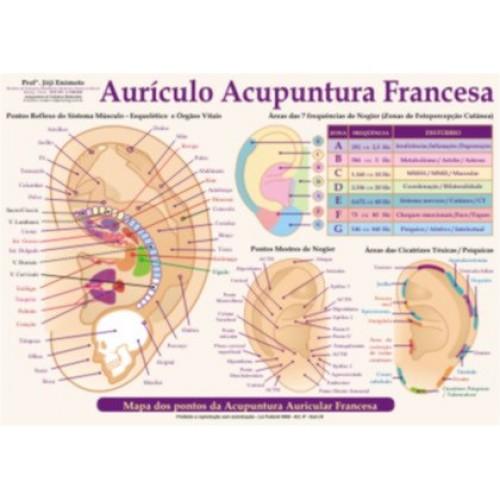 auriculoterapia francesa joji enomoto mapa acupuntura