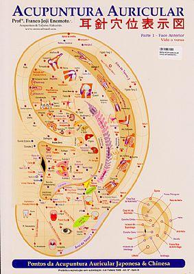 mapa auriculoterapia joji enomoto