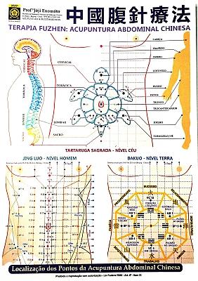 acupuntura abdominal joji enomoto