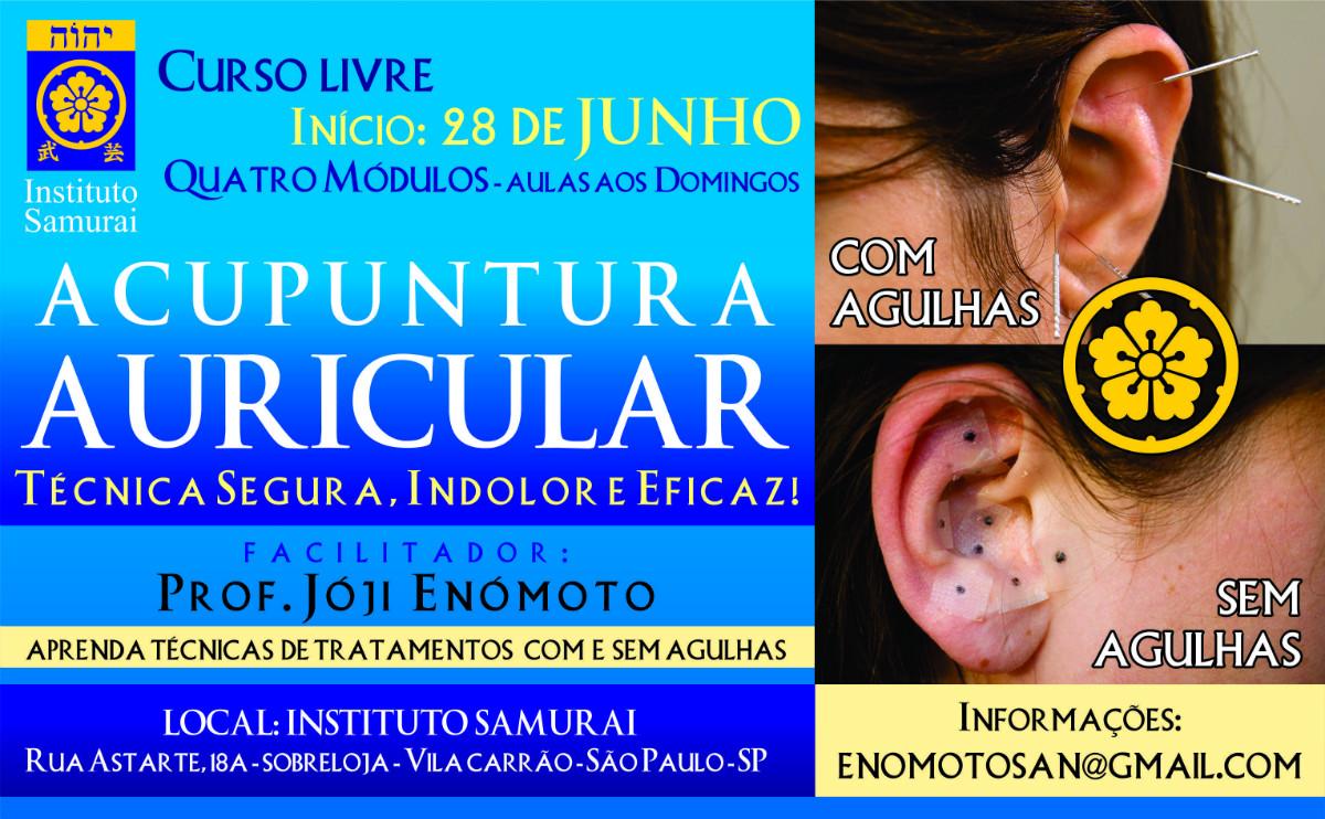 Curso Acupuntura Auricular Enomoto