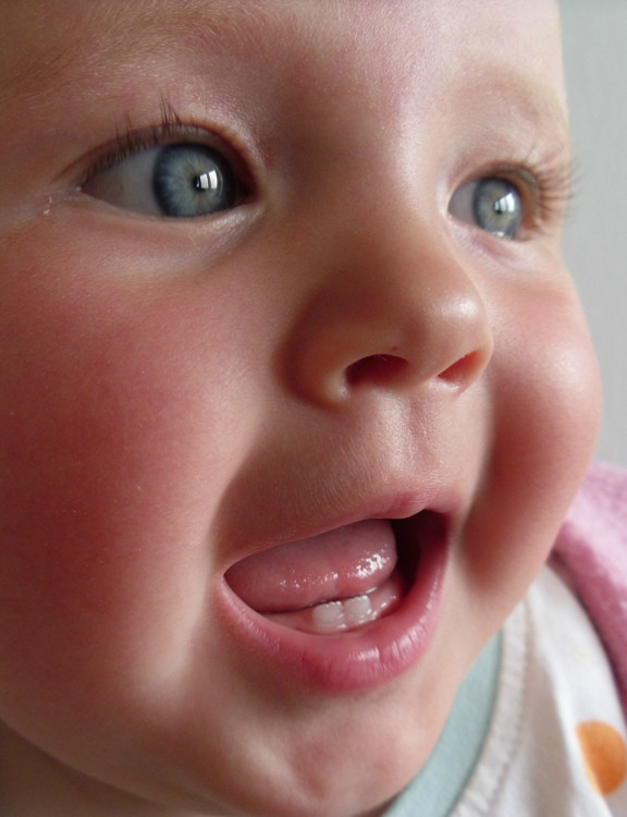 http://images.comunidades.net/cli/clinicaciso/Baby_teeth_in_human_infant.jpg