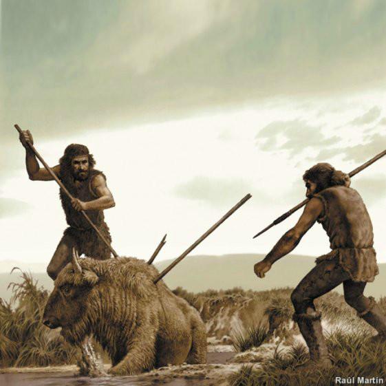 Somos predadores. Por falta de presa, nos depredamos