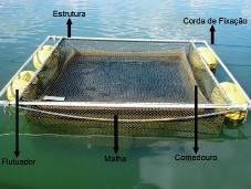 tanque rede para peixes