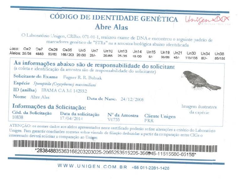CIG - Abre Alas