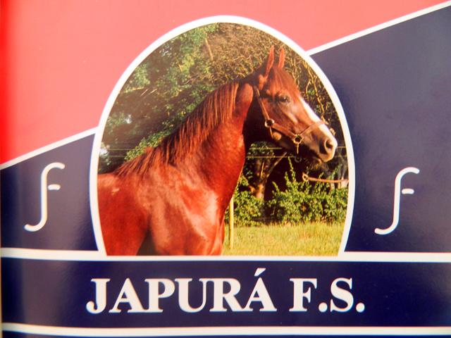 Japurá FS