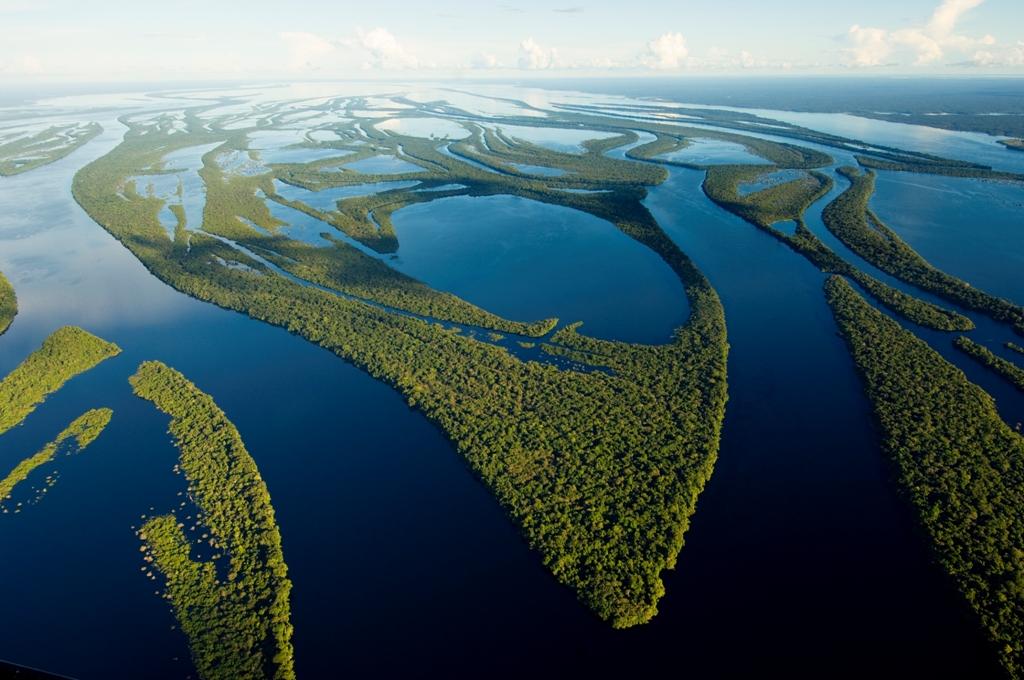 Parque nacional arquipelago anavilhanas imagem aerea