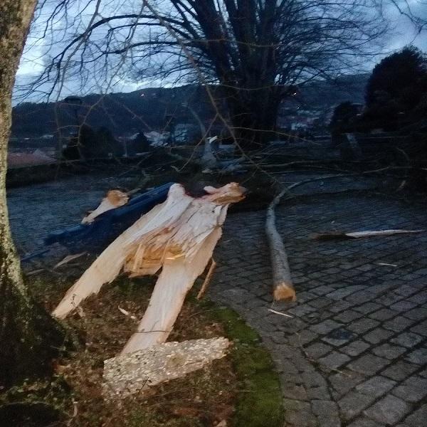 Temporal da ultima noite deixou vários estragos na vila