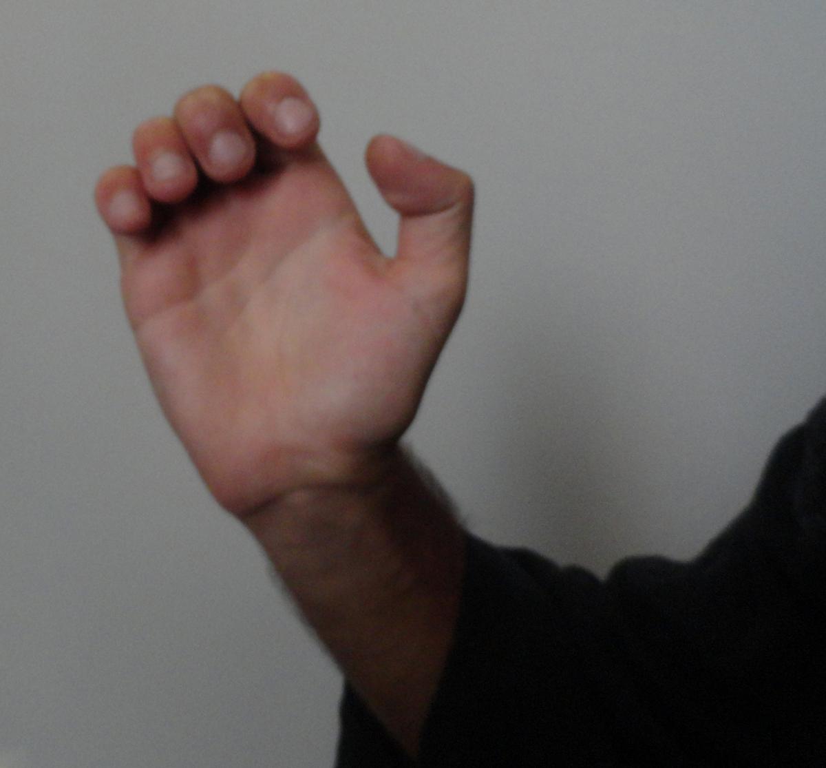 Golpe de Mão Aberta