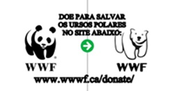 https://images.comunidades.net/nn4/nn40/URSOPOLARdoe250x131.jpg