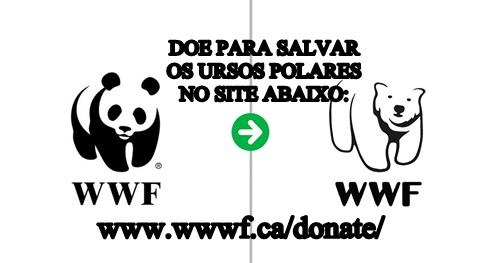 https://images.comunidades.net/nn4/nn40/WWWFLOGOURSOPOLARdoe.jpg