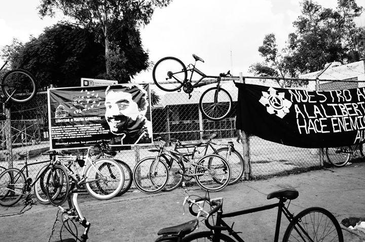 confederação do anarquismo organizado socialmente