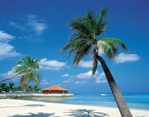 Ilha do caribe