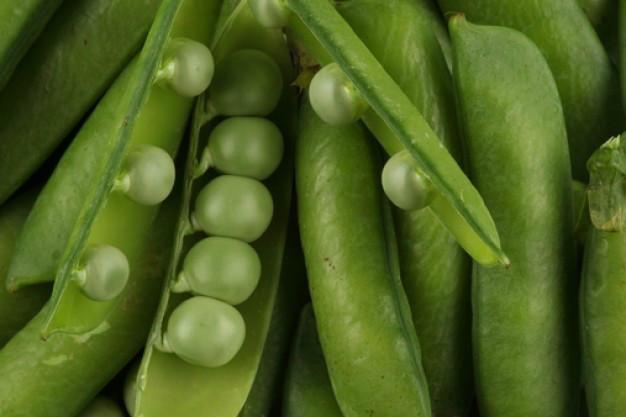 Proteína Vegetal Nutrilite