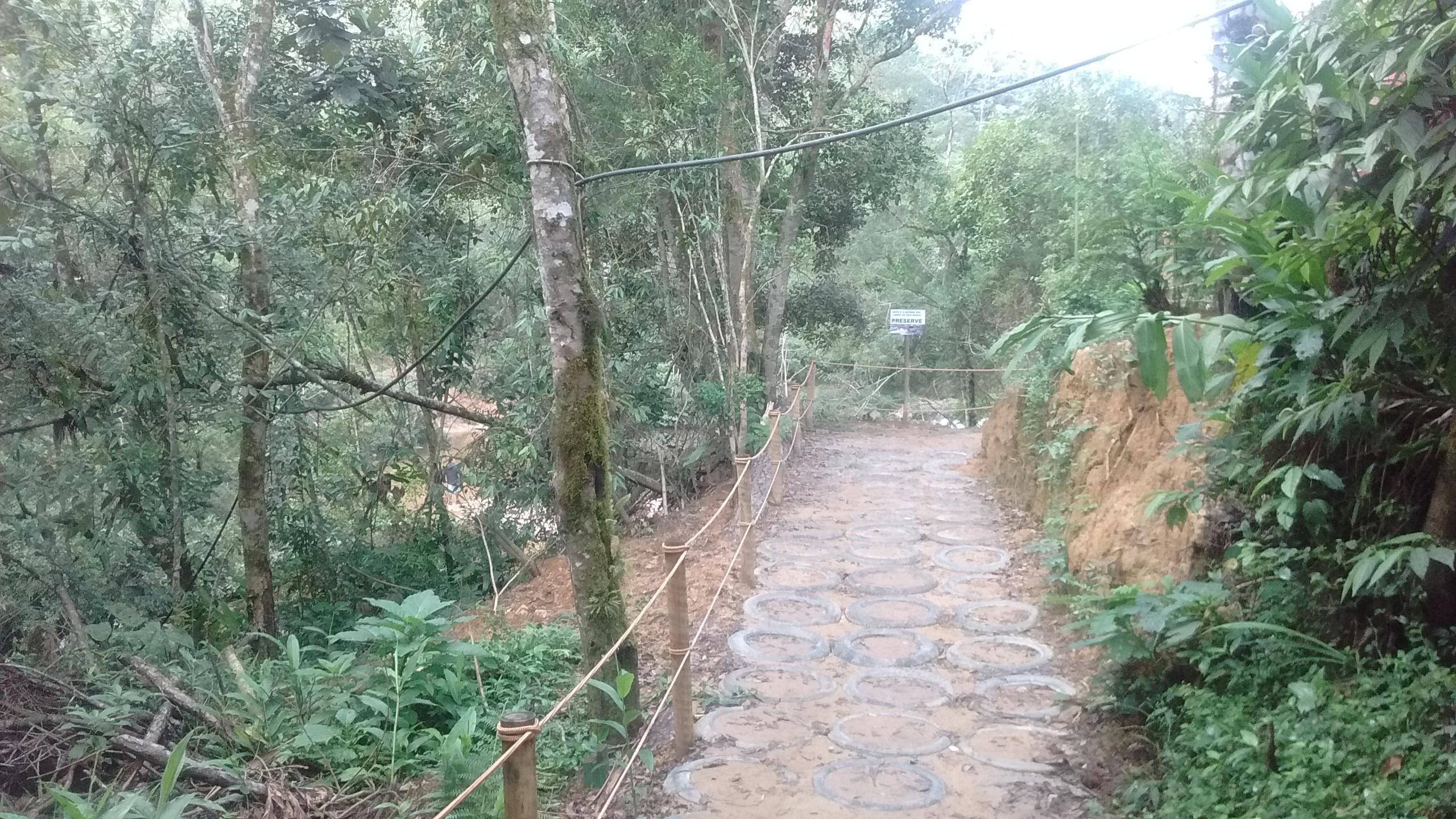trilha na natureza