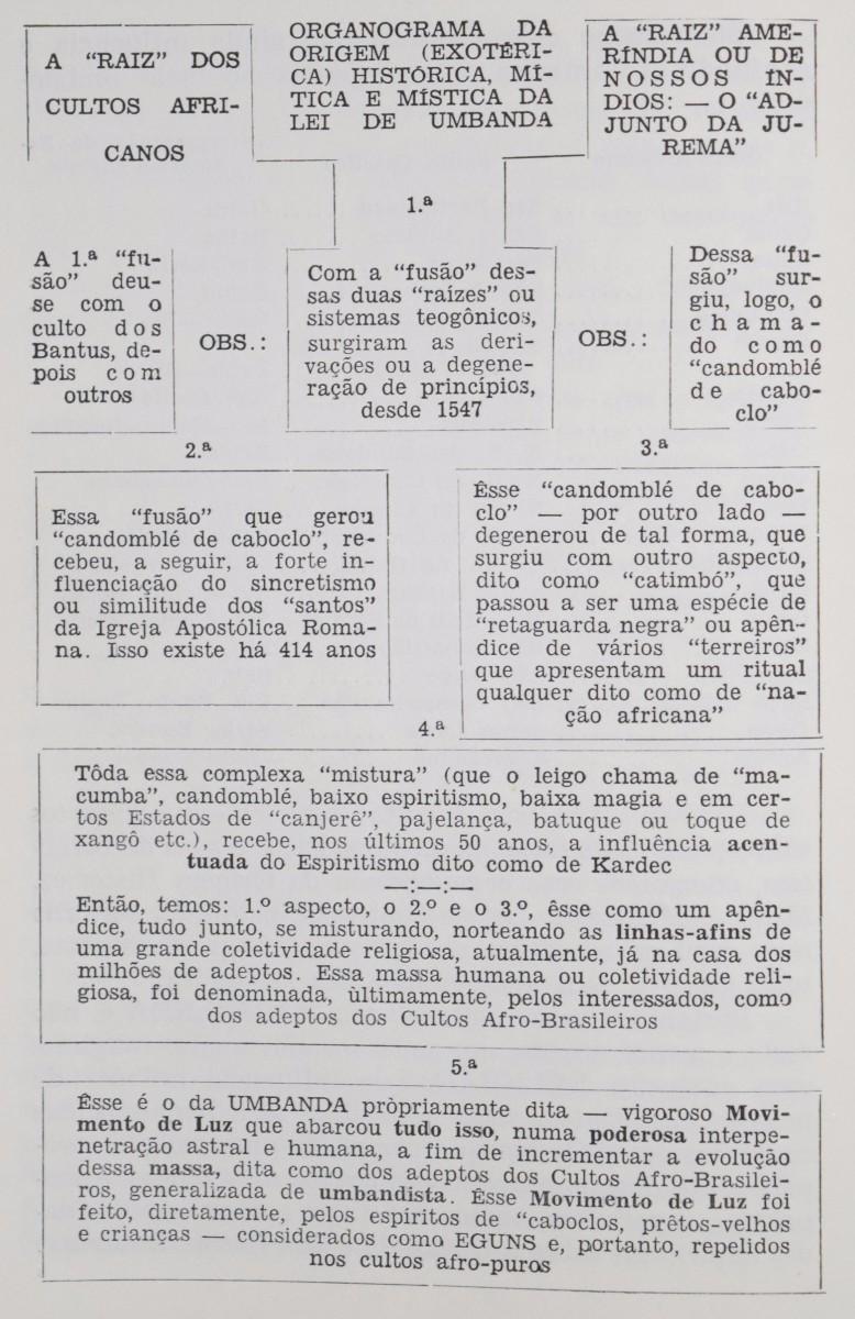 organograma e fundamentos