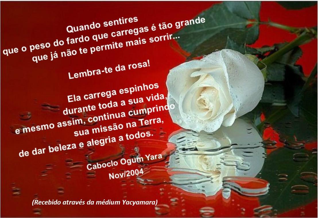 http://images.comunidades.net/umb/umbandadobrasil/MENSAGEM_CABOCLO_OGUM_YARA.jpg